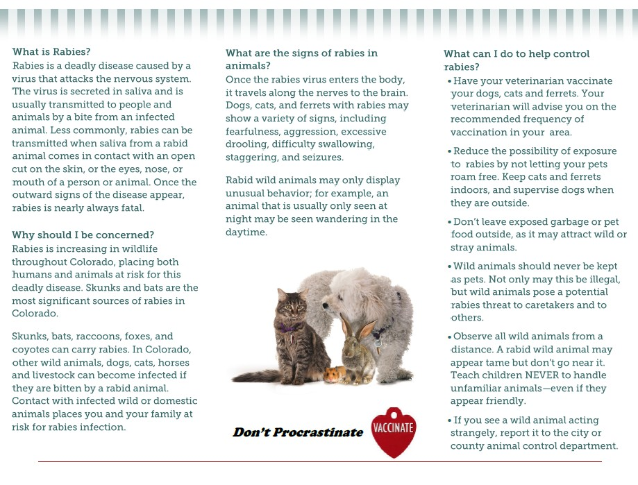 Rabies Prevention Brochure Page 1